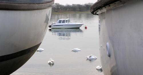 Swans Framed By Boats by gazleton