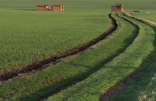 A Suffolk Scene by theyokel