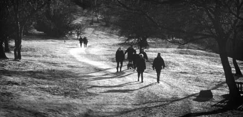 Winter Walk by gpwalton