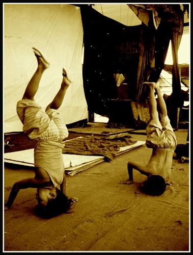Burmese headstands by niamh