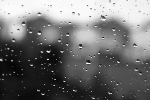 Rainy Window by dougv