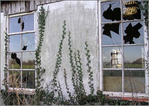 Windows With Reflections by gazleton