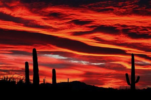 Desert Fire by billma