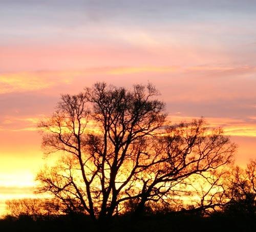 Colourful sunrise by simon9924