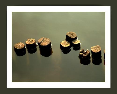 Stumps by iamagoo