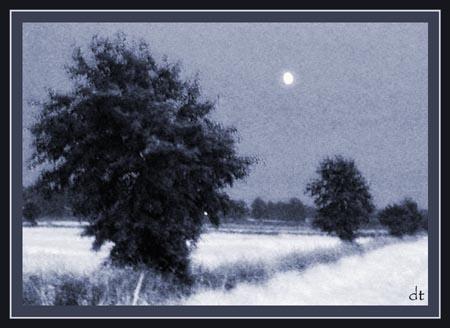 Moonlit by tandav