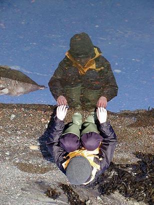 reflective dip by jamsa