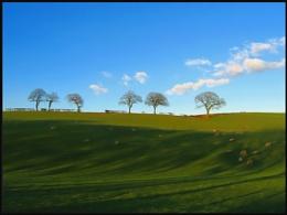 Hill Cloud Trees
