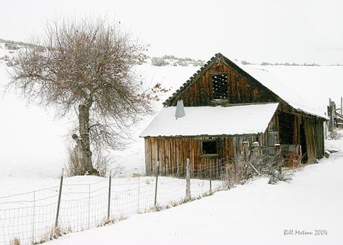 Homestead by billma
