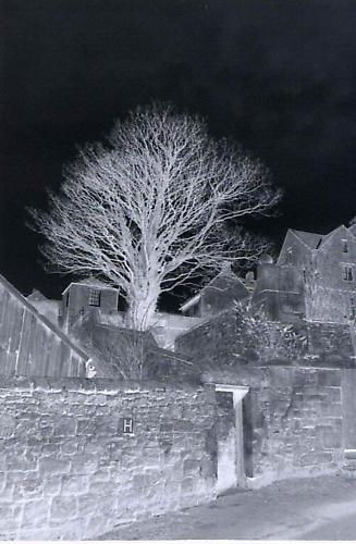 Spooky by davey