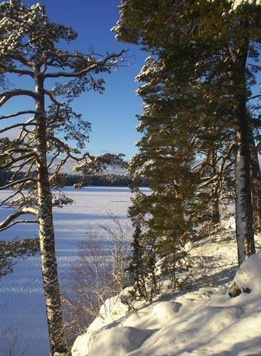 Snowy scene 2 by kingseany
