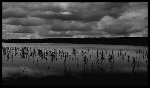 Lake by stevearm