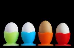 Eggtraordinary