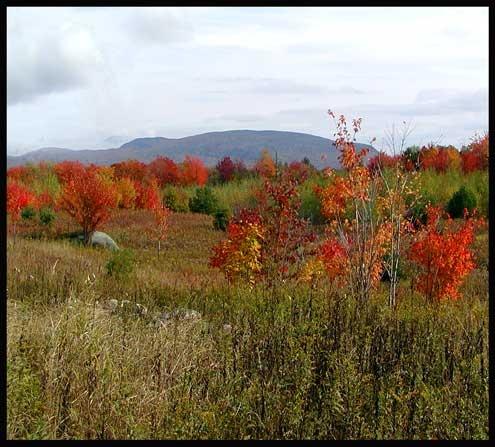 Autum in Adirondacs by anna_p
