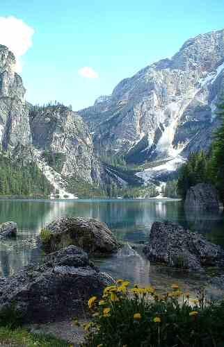 Lago Di Braises by hedge