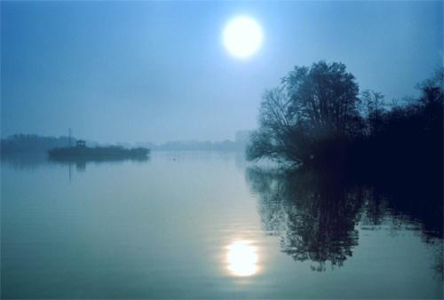 Misty Blue by bill j