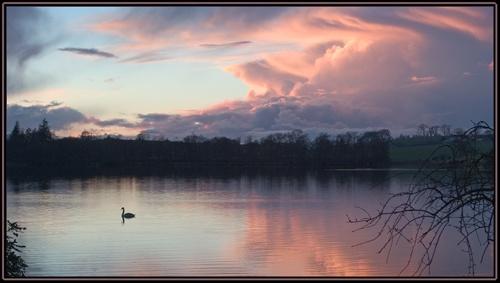 Swan Loch by srw_white