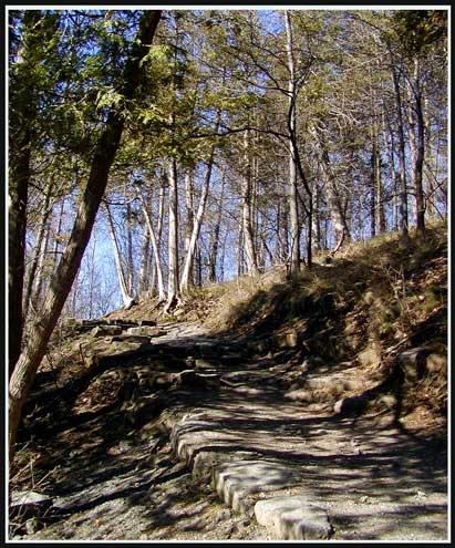 Path by anna_p