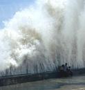 Wat-er Wave