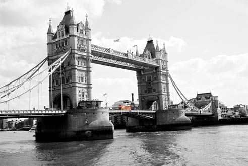 London Pride by pagey
