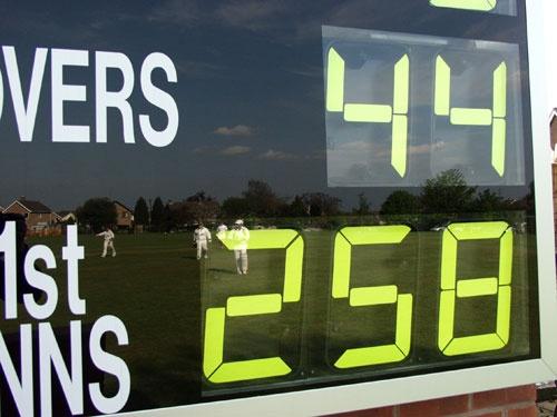 Any 1_ 4 Cricket by Kim Walton