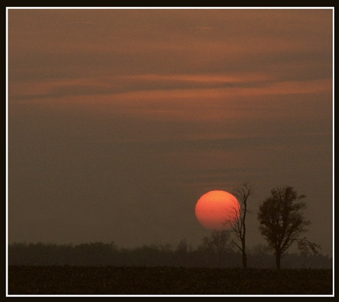 Ball of Fire by ontarian