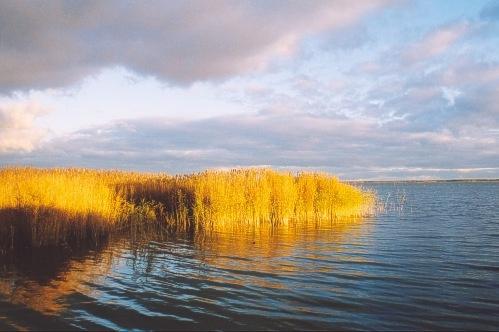 Baltic Sea Drama by ariane