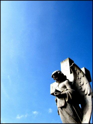 angel by stevearm