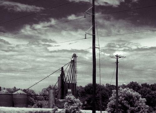 Roadside by fez
