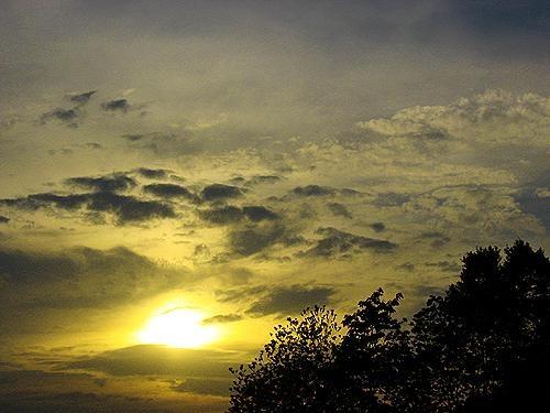 Sky Lemon by fez