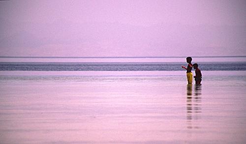 Low Tide Fishing by nicbone