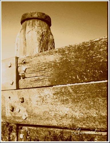 Rustic Shoreline by llonaid