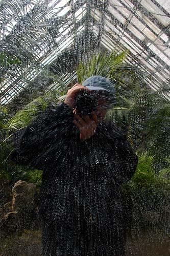 Greenhouse Self Portrait by ericfaragh