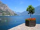 Lake Garda in the Sun