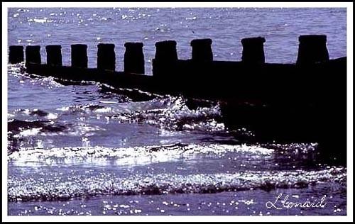 Rustic Shoreline 2 by llonaid