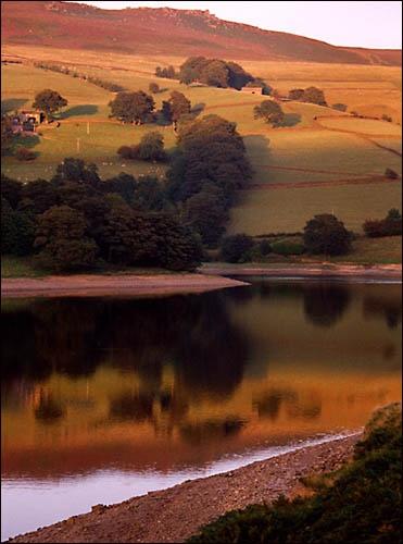 Reflection by dfawbert