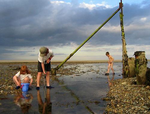 crabbing (again!) by john p
