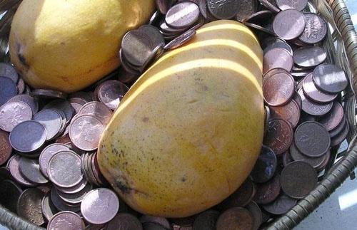 mangos and money by silvina