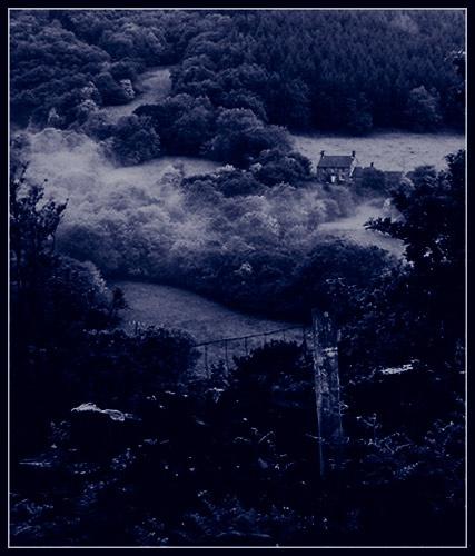 Dawn Mist by eskimo