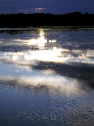 Pools of Light