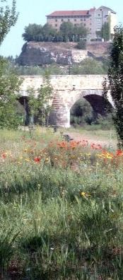 Roman Bridge, Salamanca by bigbed