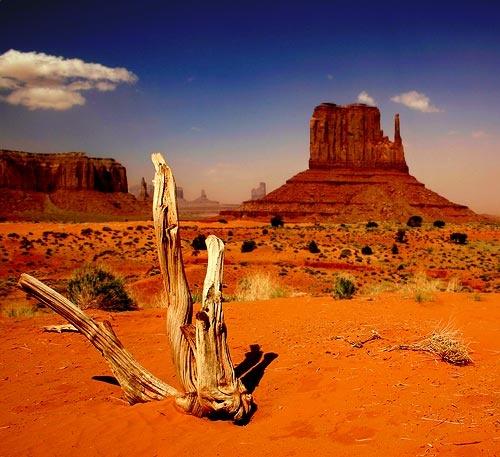 Navajo National Park by rusmi