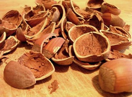 Hazelnuts by silvina