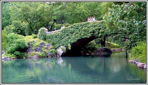 Bridge Party by llonaid