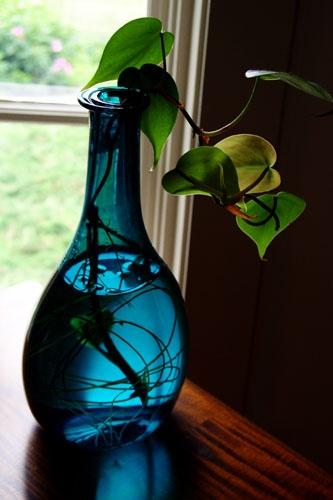 Blue Bottle by street3