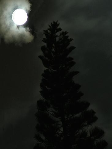 Moonlight by ahitsjustme
