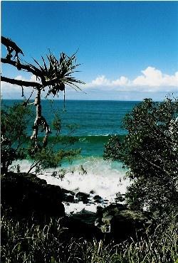 Noosa, Queensland by Baz Hilder