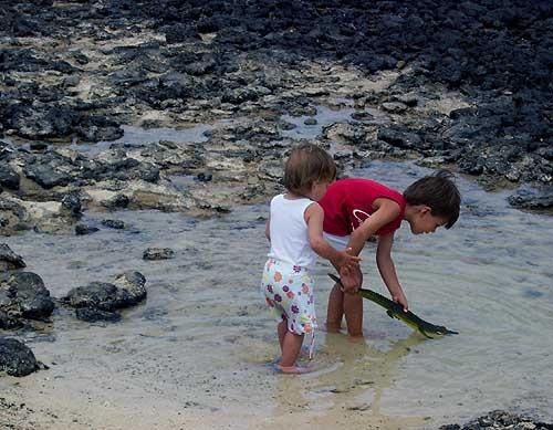 Kids by davidhope