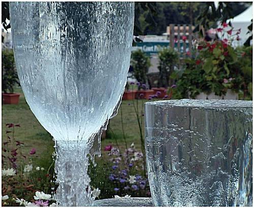 Iced Wine by guzman