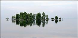 Mattamuskeet Lake **